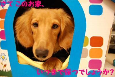 2007_0104(030).jpg