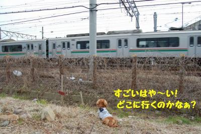 電車に遭遇3