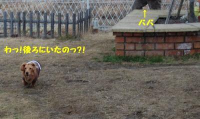 鬼ごっこ?3