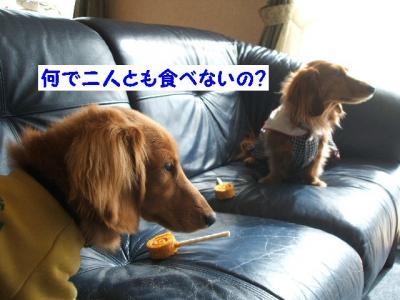 何で食べないの?