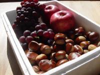 栗・ブドウ・リンゴ