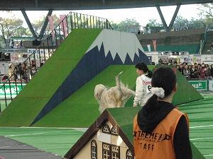 次は富士山