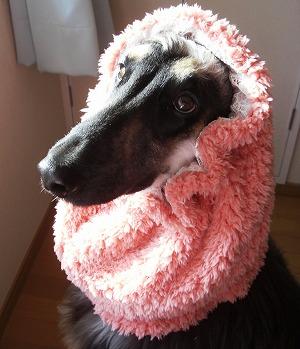 ピンクは似合う?