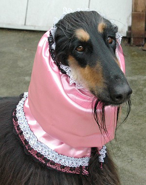 ピンクアーサー