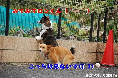 2008051301.jpg