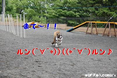2008051302.jpg