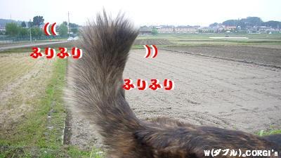 2008060201.jpg