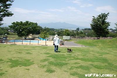 2008061301.jpg