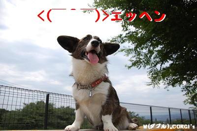 2008061308.jpg