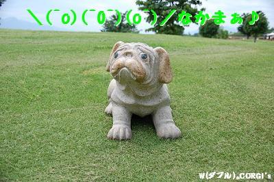 2008061309.jpg