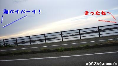 2008072809.jpg