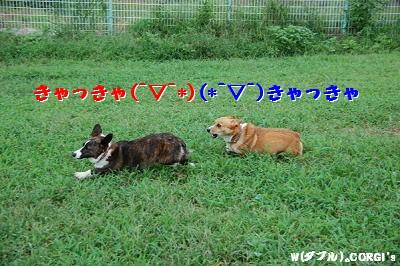 2008090502.jpg
