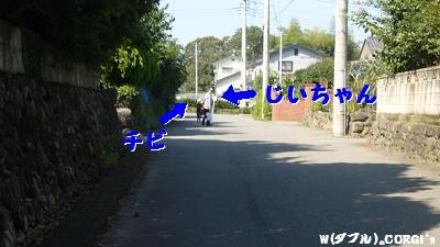 2008091301.jpg