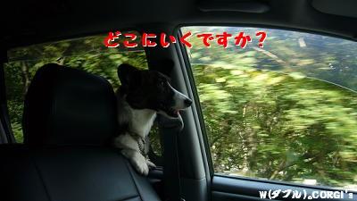 2008091702.jpg