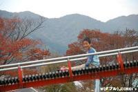 2008102506.jpg