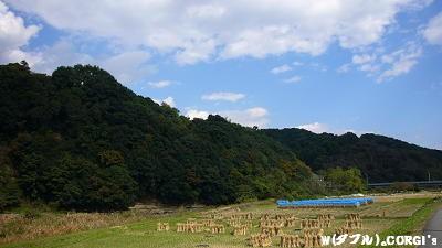 2008102705.jpg