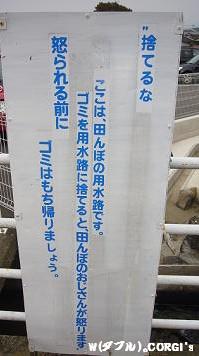 2008103112.jpg