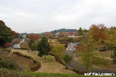 2008110301.jpg