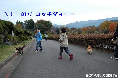 2008110305.jpg