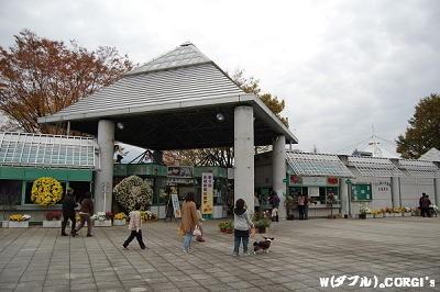 2008110902.jpg
