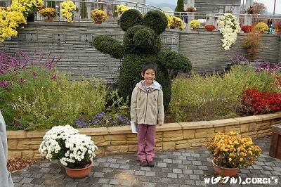 2008110905.jpg