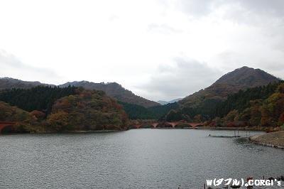 2008111103.jpg