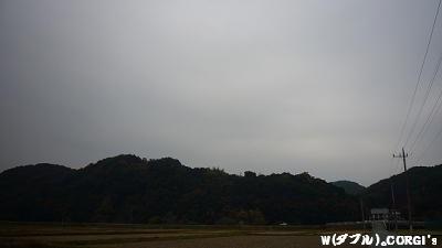 2008111501.jpg