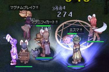 戦う!うさぎ!