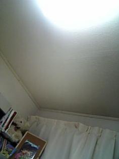 天井が見える