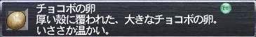 20060730002507tama.JPG