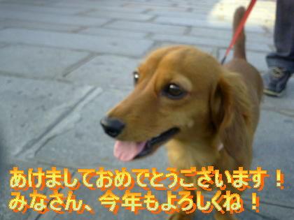 2006_01_01