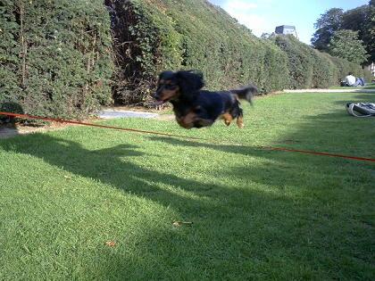 ユリちゃん、なんとジャンプを披露!