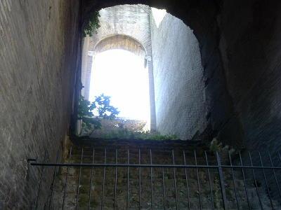 コロッセオ内部から、青空をのぞく