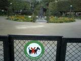 ああ、むこうには魅力的な公園が