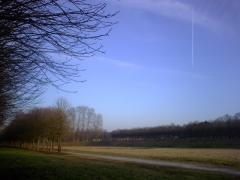 飛行機雲。この季節にはめずらしく青い空がみえる