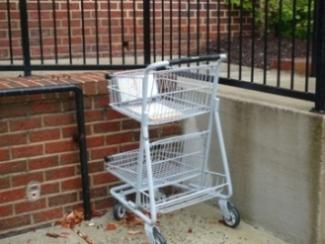 cart.jpg