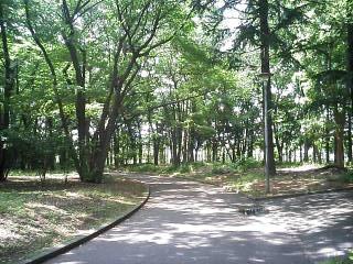 greenpark01.jpg