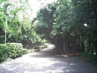 greenpark3.jpg