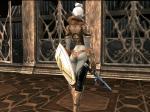 Shillien Knight④