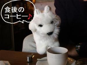 ♪コーヒー♪