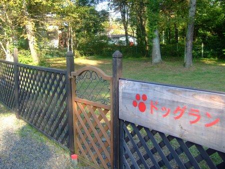 軽井沢09年9月 071