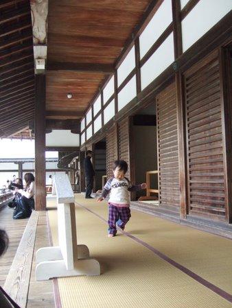 2009.11大阪・京都 041