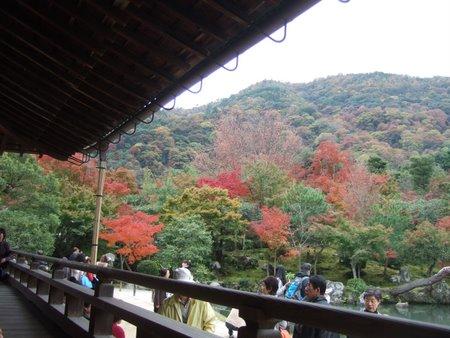 2009.11大阪・京都 023