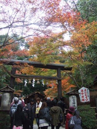 2009.11大阪・京都 110