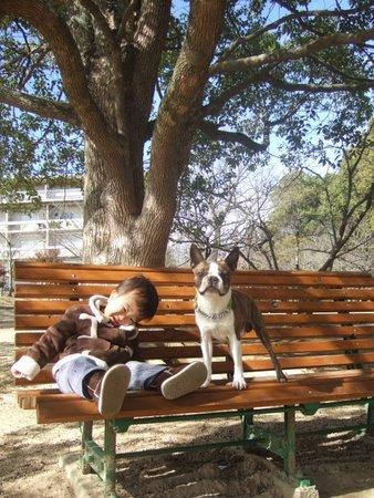 日岡山公園 051