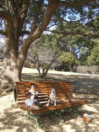 日岡山公園 076