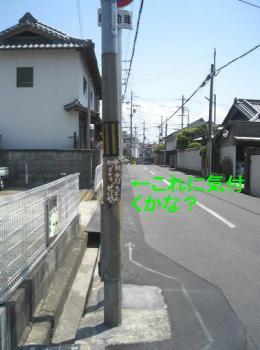 20070522230646.jpg
