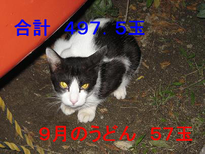 20071002235131.jpg
