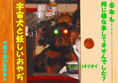 宇宙犬と・・・