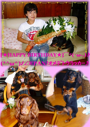 [ミ☆ HAPPY BIRTHDAY ☆彡]⌒ヾ(・ω-。)~♪